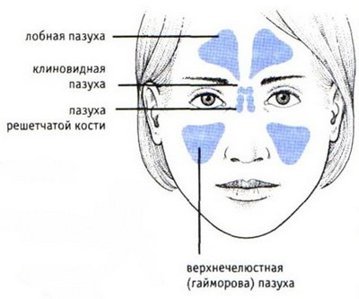 гнойный фронтит: